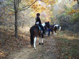 H Williams Babe Crystal Crown Judged Trail Ride VA 11 08