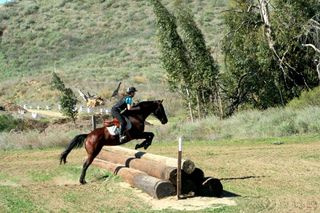 Jumping at moorpark - january