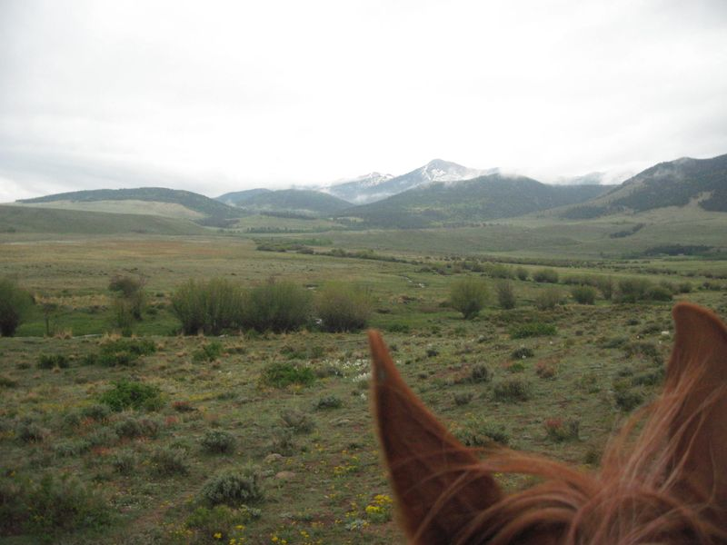 Sangre Scenic two day endurance ride in Easyboot Glue-Ons 009
