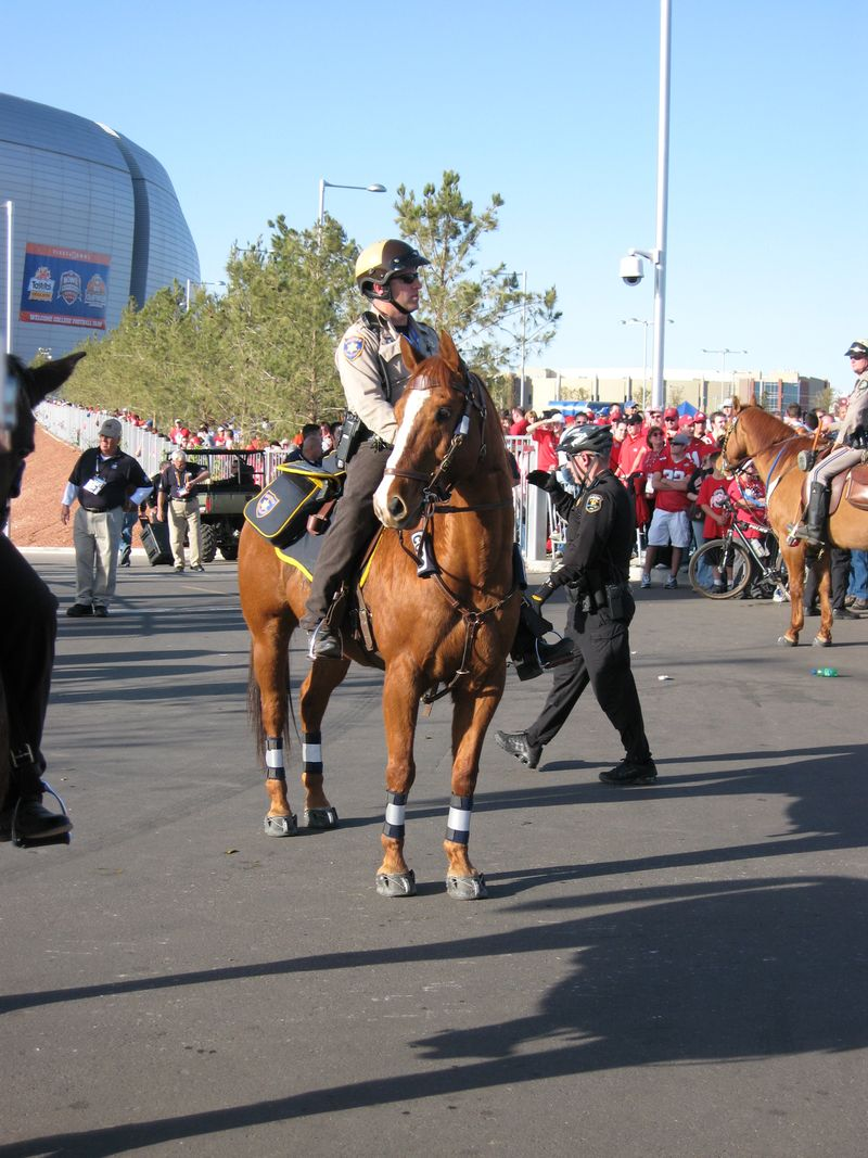 Easyboots on mounted patrol at BCS National Championship Game 004