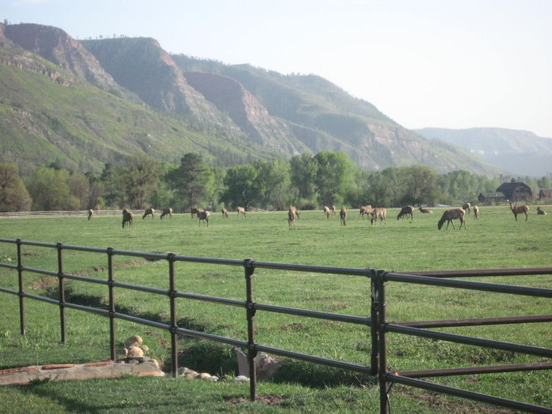 Migration to Durango 004