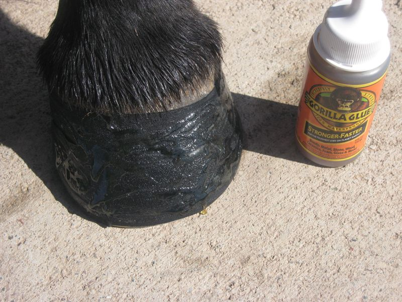 Easyboot Glue Ons with Gorilla Glue and Athletic Tape 005