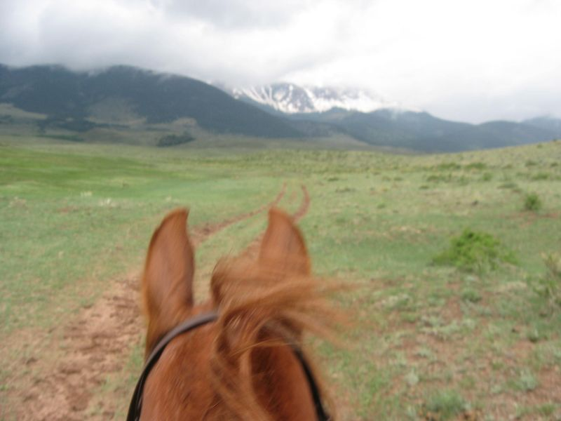 Sangre Scenic two day endurance ride in Easyboot Glue-Ons 016