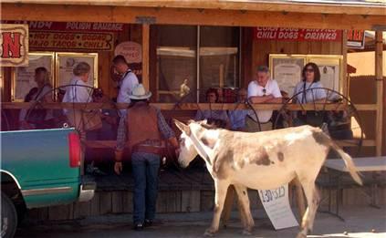 090831-fat-burro-hmed-8a_hmedium