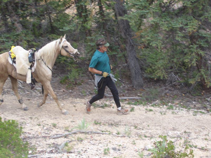 Bryce Canyon 020