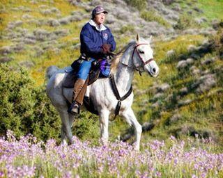 Tulip-endurance-ride1 (Medium)