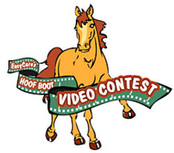 Videocontesthorsesm_2