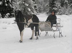 Boa_horse_boots_in_snow_2