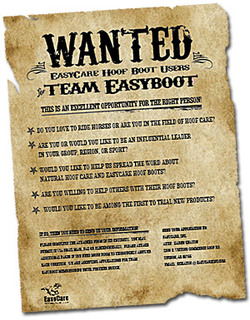 Wantedteameasyboot