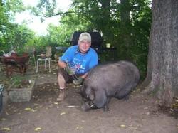 Pig_trimmer_3