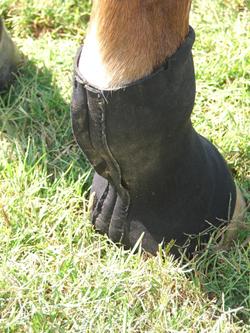 Sock_behind_1_2